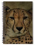 Cheetah Face Spiral Notebook