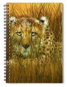 Cheetah - In The Wild Grass Spiral Notebook
