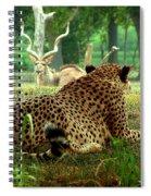 Cheetah Lunch-87 Spiral Notebook