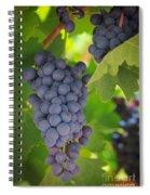 Chelan Blue Grapes Spiral Notebook