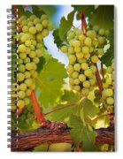 Chelan Grapevines Spiral Notebook