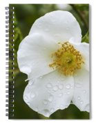 Cherokee Rose With Rain Drops Spiral Notebook