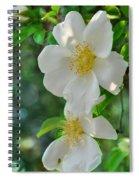 Cherokee Roses Spiral Notebook