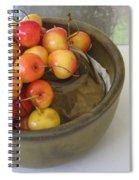Cherries And Glass Filler Spiral Notebook