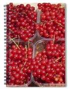 Currants Spiral Notebook