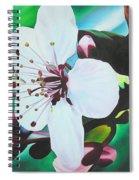 Cherry Blosom Spiral Notebook