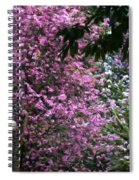 Cherry Blossom 3 Spiral Notebook