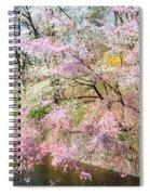 Cherry Blossom Land Spiral Notebook
