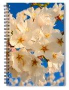 Cherry Blossom Macro Spiral Notebook