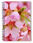 Cherry Blossom Special II Spiral Notebook