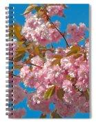 Cherry Blossoms 2 Spiral Notebook