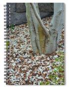 Cherry Blossoms 2013 - 002 Spiral Notebook