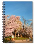 Cherry Blossoms 2013 - 015 Spiral Notebook