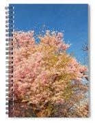 Cherry Blossoms 2013 - 016 Spiral Notebook