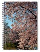 Cherry Blossoms 2013 - 038 Spiral Notebook