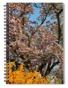 Cherry Blossoms 2013 - 051 Spiral Notebook