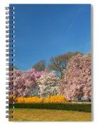Cherry Blossoms 2013 - 052 Spiral Notebook