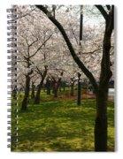 Cherry Blossoms 2013 - 057 Spiral Notebook