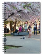 Cherry Blossoms 2013 - 069 Spiral Notebook