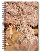 Cherry Blossoms 2013 - 076 Spiral Notebook