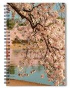 Cherry Blossoms 2013 - 079 Spiral Notebook
