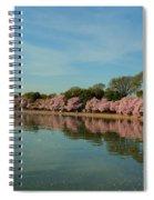 Cherry Blossoms 2013 - 087 Spiral Notebook