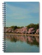 Cherry Blossoms 2013 - 088 Spiral Notebook