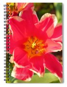 Cherry Blossoms 2013 - 093 Spiral Notebook