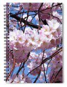 Cherry Blossom Trees Of Branch Brook Park 3 Spiral Notebook