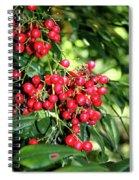 Cherry Laurel  Spiral Notebook