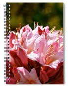 Cherry Mist Azalea Spiral Notebook