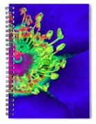 Cherry Pie Rose - Photopower 2891 Spiral Notebook