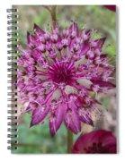 Cherry-queen Of The Prairie Flower Spiral Notebook