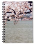 Cherry Tree And The Potomac Spiral Notebook