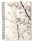 Cherry Tree Blossom Artistic Closeup Sepia Toned Spiral Notebook