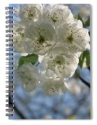 Cherry Tree Petals Spiral Notebook