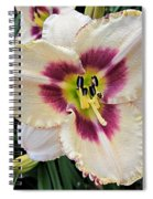 Cherryberry Daylily Spiral Notebook