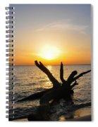 Chesapeake Bay Driftwood At Sunset Spiral Notebook