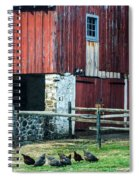Chester County Chickens Spiral Notebook