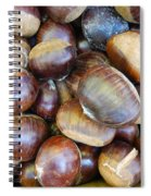Chestnuts Spiral Notebook