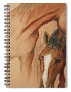Cheyene Country Spiral Notebook