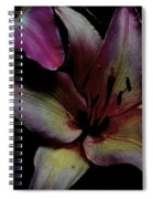 Chiaroscuro Lilies Spiral Notebook