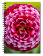 Chick A Dee Dahlia Spiral Notebook