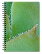 Chick Spiral Notebook
