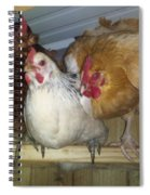 Chick Trio  Spiral Notebook