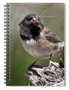 Chickadee Bringing Lunch To The Kids Spiral Notebook