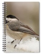 Chickadee In The Snow Spiral Notebook