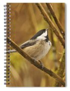 Chickadee On Alert Spiral Notebook