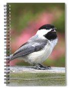 Chickadee Song Spiral Notebook