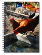 Chicken A La Carte Spiral Notebook